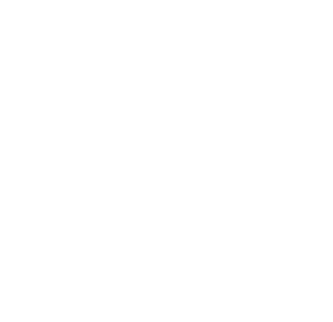 South College Promise